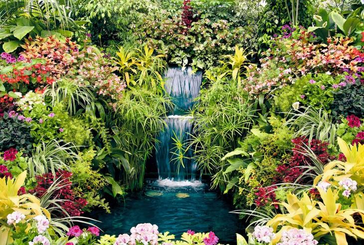 Фотообои «Ботанический сад»