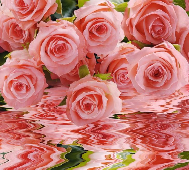 Фотообои «Нежно-розовый букет»