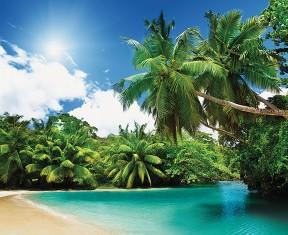 Фотообои «Мангровые острова»