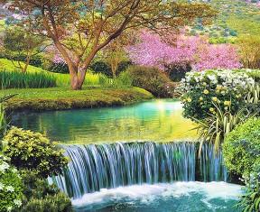 Фотообои «Японский парк»